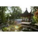 Asiens trädgårdar