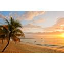 Ja, vi elsker Karibia