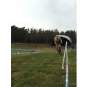 Fartsfylt NorgesCup i Arendal