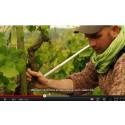 Nytt avsnitt av A Wine Life - Webb-TV från Crozes-Hermitage producenten Domaine Habrard
