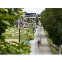 Umeå uppstickare när finalen av Europeisk miljöhuvudstad avgörs