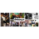 Popkollo: 500 platser på sommarens Popkollon