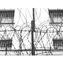 Anhöriga till politiska fångar i Vitryssland kommer till Stockholm 14-16 mars