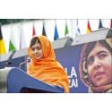 Fredsprisen og Menneskerettighetsdagen, hånd i hånd!