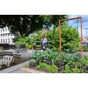 Nu tar Green Landscaping över parkskötseln i Alingsås