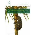 FSC driver utvecklingen till ett kemikaliefritt skogsbruk