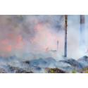 Nya grepp krävs efter skogsbränder