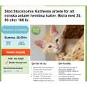 Insamlingen till Stockholms Katthem gav en skjuts i rätt riktning för att minska antalet hemlösa katter
