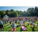 Magi i Botaniska trädgården när över 600 personer samlades för yoga!