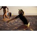 Sport, avkobling og helsekost: Star Tour lanserer nytt livsstilskonsept