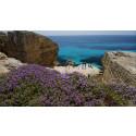 4 tips om byer å besøke på Sicilia