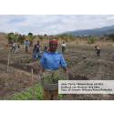Kvinnliga småjordbrukare har nyckeln för att avskaffa hungern  i världen