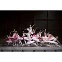 Kärleksfull hyllning till den klassiska baletten