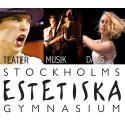 Öppet hus Stockholms Estetiska Gymnasium