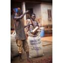 Bare bedre betaling kan forhindre kakaokrise