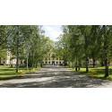 Högskolan i Gävle befäster sin position som ledande fastighetsmäklarutbildare