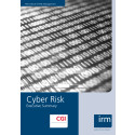 Cyber Risk Guidance