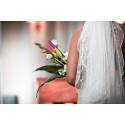 Svenska kyrkan erbjuder raketstart på äktenskapet