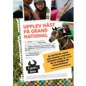 Upplev Häst besöker Grand National och Strömsholm