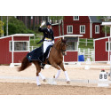 Svenska dressyrryttarna klara till Falsterbo Horse Show