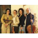 En ovanligt rolig stråkkvartett