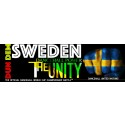 Sweden represent in DUN DEM - VP Records Strictly the best Dancehall Worldcup Championship