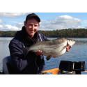 Fyra nya sportfiskerekord