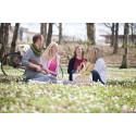 Vår - Picknick i det gröna