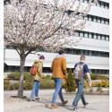 Pressinbjudan: Avslutning för Korta vägen – satsningen som gett utländska akademiker jobb