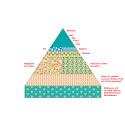 Medelhavskosten fokuserar på färsk, naturlig mat
