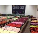 Blomsterimporten till Sverige fortsätter att öka