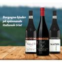 Borgogno bjuder på spännande italiensk trio!
