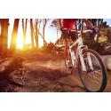 Cykeltävling i skogen
