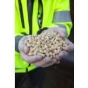 Ökad pelletsproduktion i Sverige trots en krympande marknad