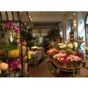Blomsterbranschen – en fackhandel som överlevt!