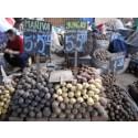 Samarbete inleds mellan Slow Food och FAO