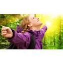 3 stressväxter som förkortar sjuktiden