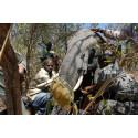 sövd elefant i Ugalla