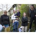 Familjen Svensson får sina bin av Lotta Fabricius Kristiansen