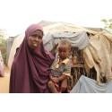 Ny rapport: Humanitär hjälp i Dadaab måste prioriteras