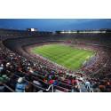Inside of the Camp Nou, Barcelona