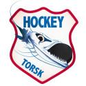 Framtiden för Djurgården Hockey