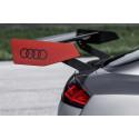Audi TT clubsport turbo grey spoiler