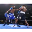Fjorten timer boksing i verdensklasse på Viaplay. Floyd Mayweather Jr. avslutter PPV-maraton