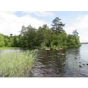 20:e plats för bra naturvård i Växjö
