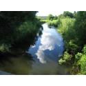 Kommunen avråder från att äta fisk från Oxundasjön