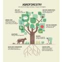 EcoOnline klimatkompenserar och bidrar till att minska hunger och fattigdom