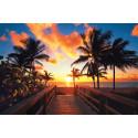 Nyhet! Escape Travel lanserer langtidsferie i Florida