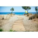 Resor till Grekland ökar i sommar