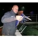 Blå hummer till Havets Hus i Lysekil